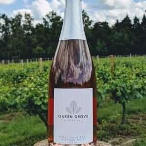 Sparkling Pinot Noir Rosé 2011 Vintage