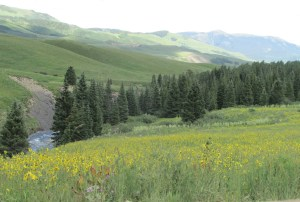 crested butte 084