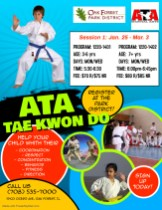 TaeKwonDo Jan Session