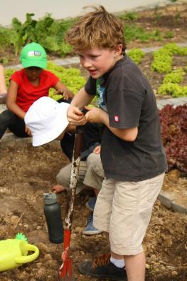 Grade-1-Gardening-Outing (23)