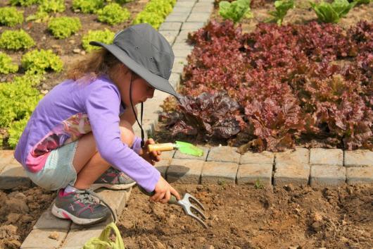 Grade-1-Gardening-Outing (32)