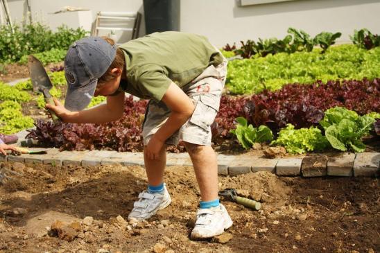 Grade-1-Gardening-Outing (34)