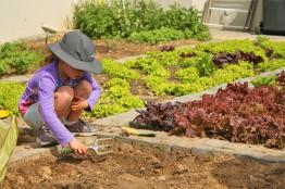 Grade-1-Gardening-Outing (35)