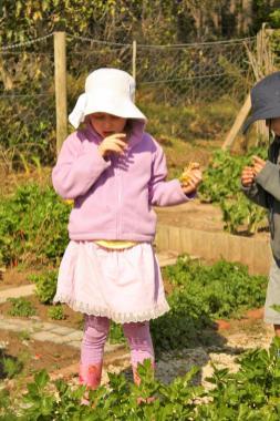 Grade-1-Gardening-Outing (64)
