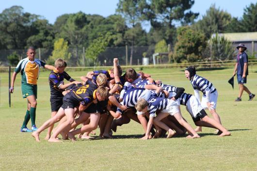 Glenwood Rugby Festival_Prep (21) (Copy)