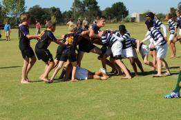 Glenwood Rugby Festival_Prep (23) (Copy)