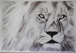 Oakhill Grade 9 Art (4)