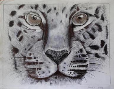 Oakhill Grade 9 Art (8)