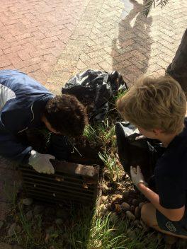 2 Grade 6 Cleanup Knysna Main Road (3)