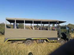 Oakhill Grade 1 African Safari Adventure (12)