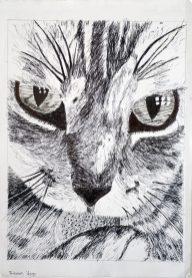 Grade 9 Pen Drawings (2)