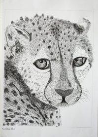 Grade 9 Pen Drawings (3)
