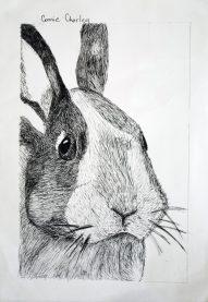 Grade 9 Pen Drawings (9)