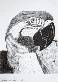 Grade 9 line drawings (3) (Copy)