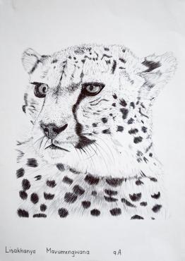 Grade 9 line drawings (5) (Copy)