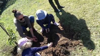 Arbor Week Little Oaks 4