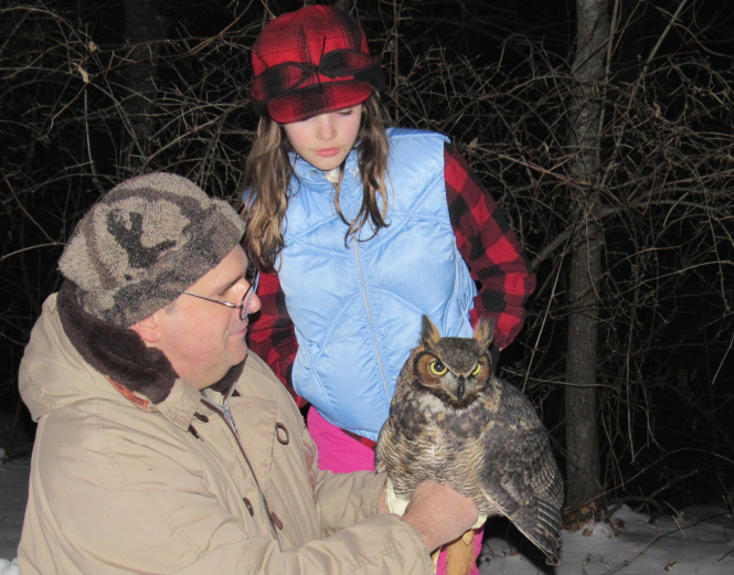 The great horned owls of Oakland County frequently prey on skunks.