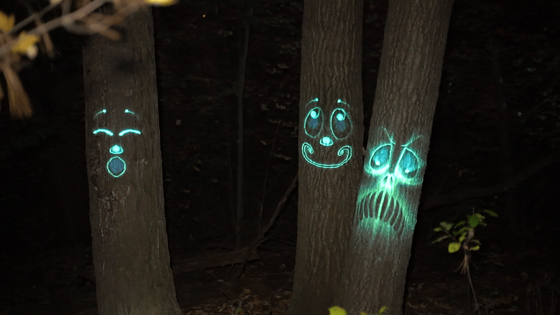 blue faces on trees