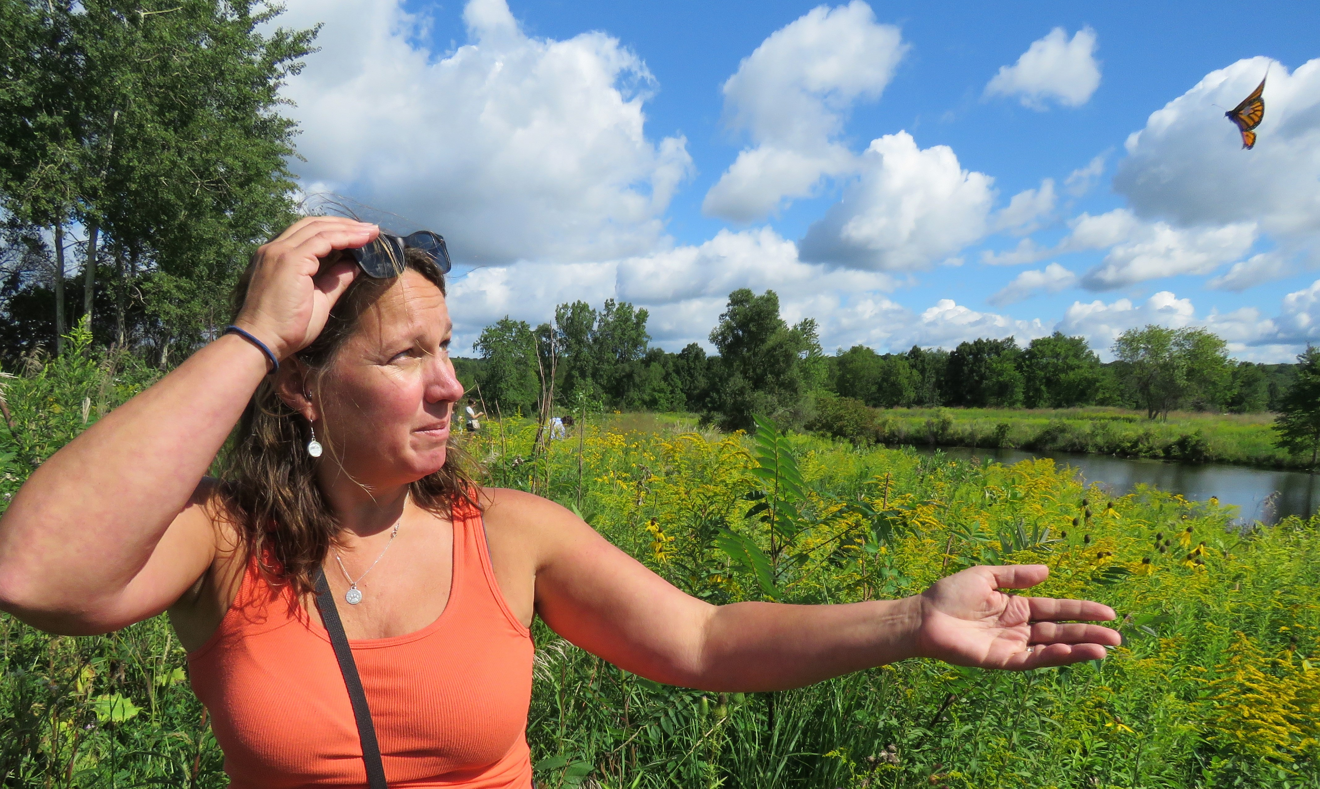 A woman releases a monarch in a meadow on a sunny day