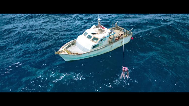 47 Meters Down: The Next Chapter Sequel Has Shark-Infested Trailer