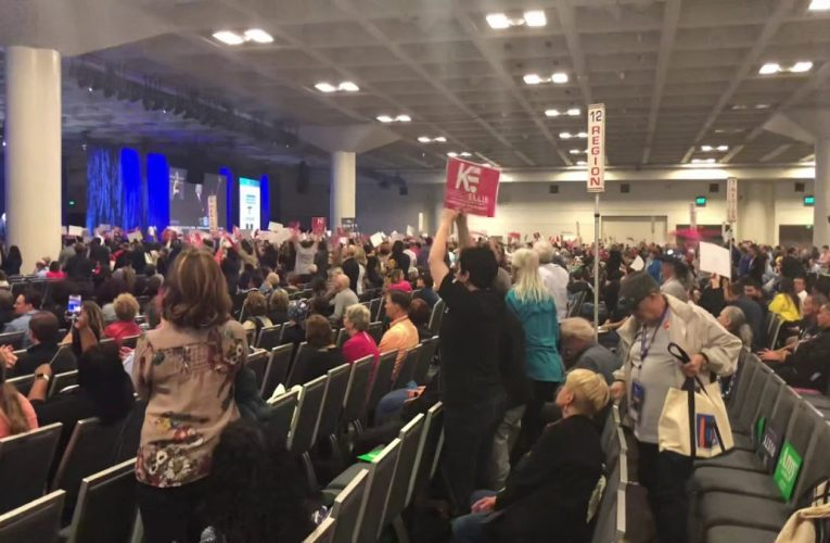 Kimberly Ellis Gets Loud Introduction At California Democratic Convention