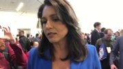 Rep Tulsi Gabbard On Trump Impeachment At California Democratic Convention 2019