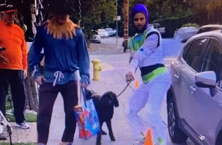 Warriors Steph Curry Goes Halloween Trick-Or-Treating With Broken Hand