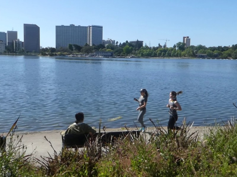 How Does Lake Merritt Oakland Look During Shelter in Place? YouTube Video Shows