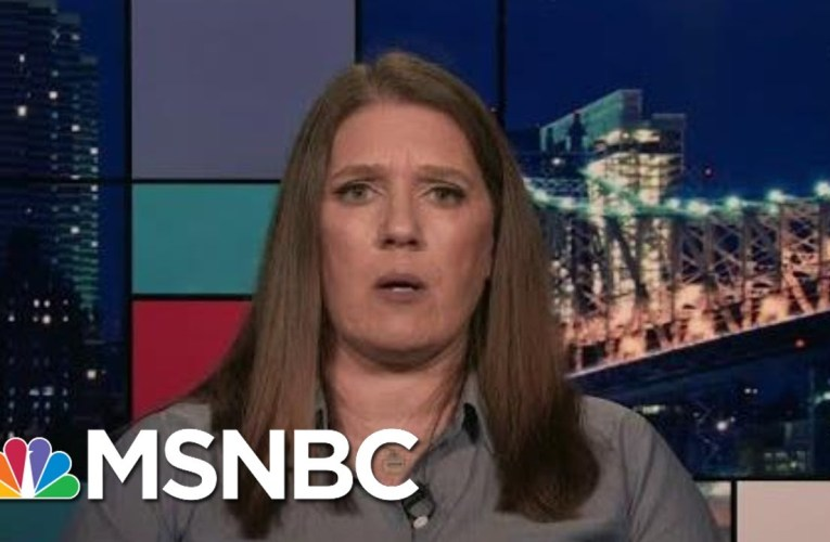 Mary Trump: 'Of Course I Did' Hear Donald Trump Use Racial Slurs | Rachel Maddow | MSNBC