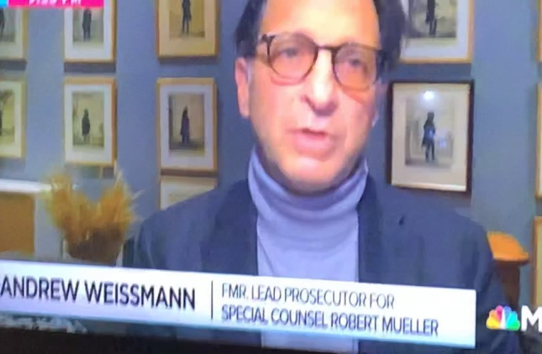 Andrew Weissmann's English Cocker Spaniel Steals The Show On MSNBC Rachel Maddow With Ali Velshi