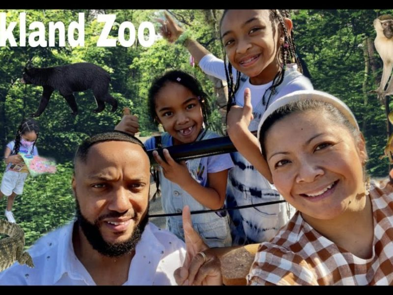 Fun With The Glover's At The Oakland Zoo Celebrating Jaida's 10th Birthday