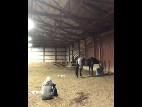 Girl Acts Sad To See How Her Horse Will React.
