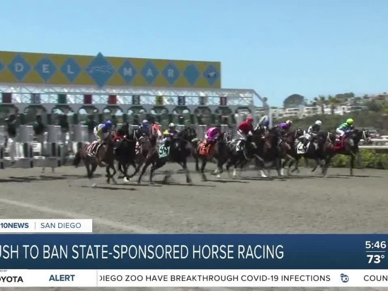 San Diego Democratic Party pushes to ban state-sponsored horse racing