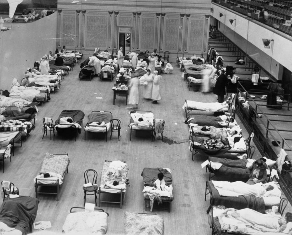 black and white image of hospital beds in rows