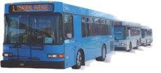 Hot Springs City Bus