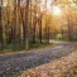 Laurel Highlands Scenic Byway