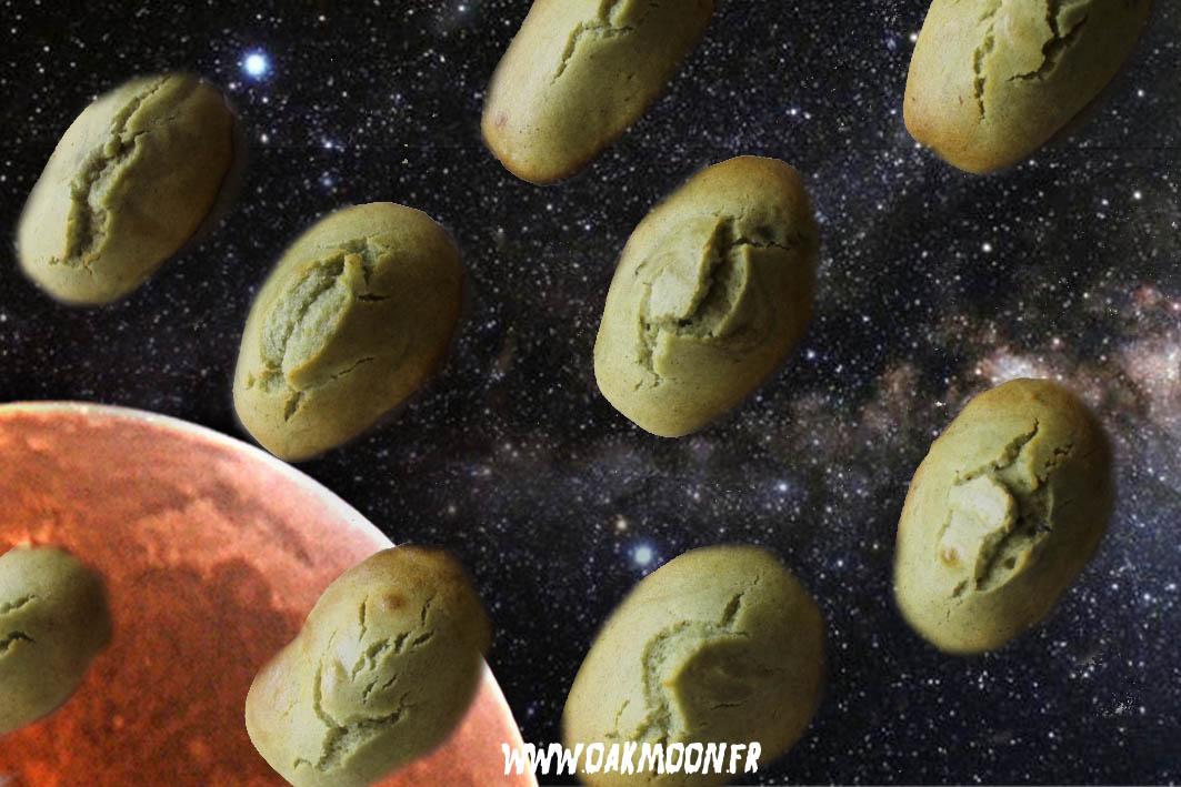 madeleines végétales sans gluten