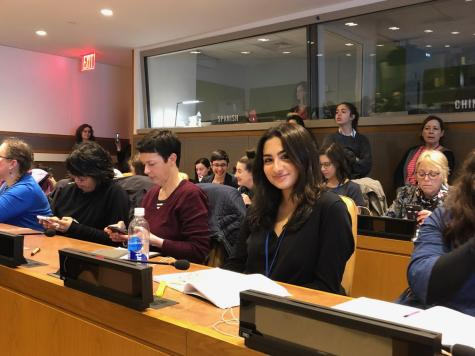 As a UN delegate, Mohebi attends the United Nation's 63rd Commission on the Status of Women in New York