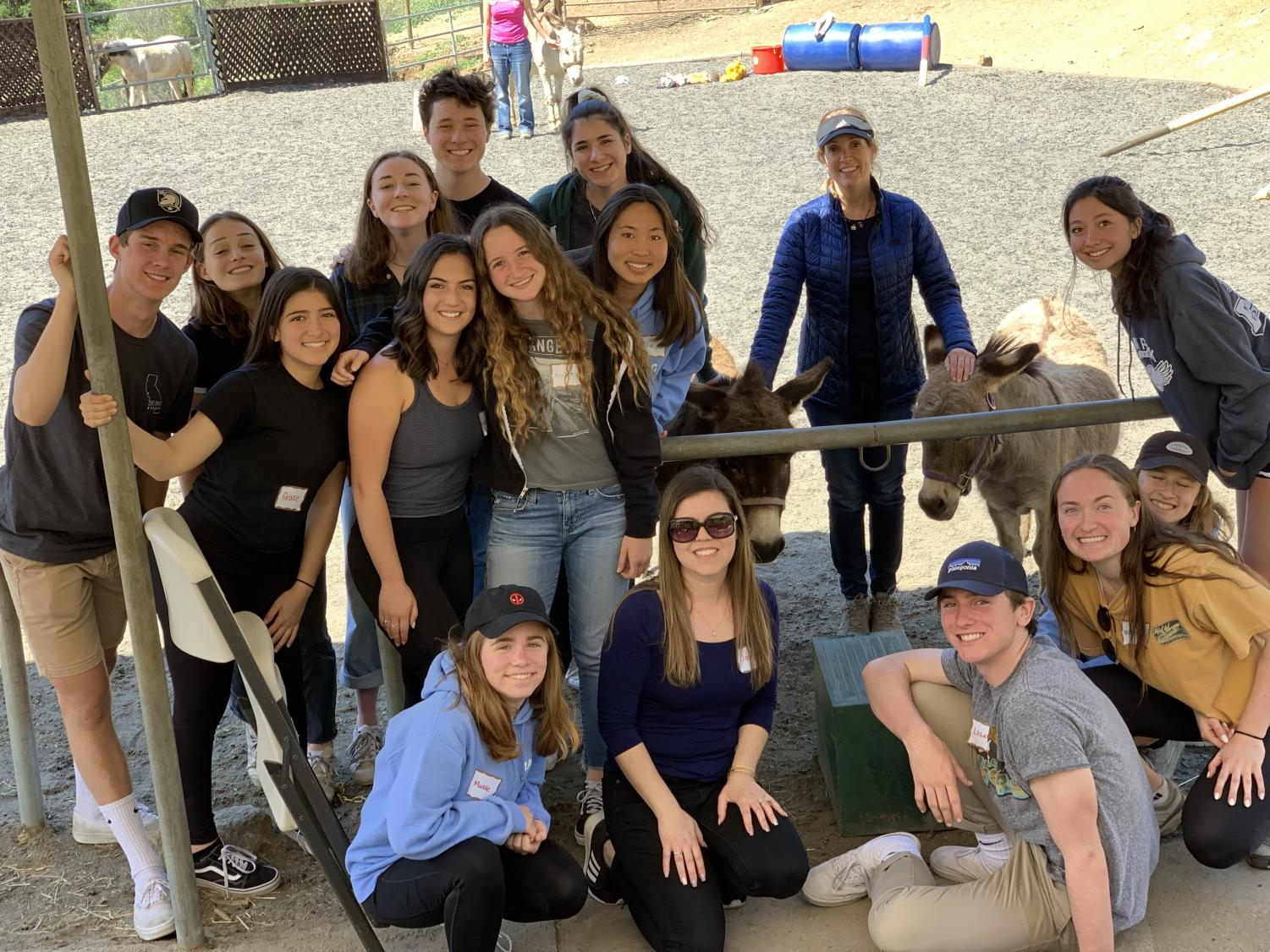 Advanced Peer Counselors took a field trip to Stand in Balance in Westlake to learn about equine therapy. Equines includes horses and donkeys.