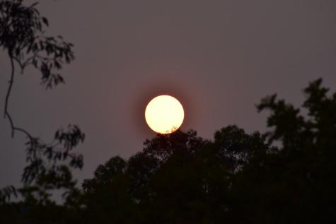 A red sun can be seen from an Oak Park apartment on Sept. 7, 2020.