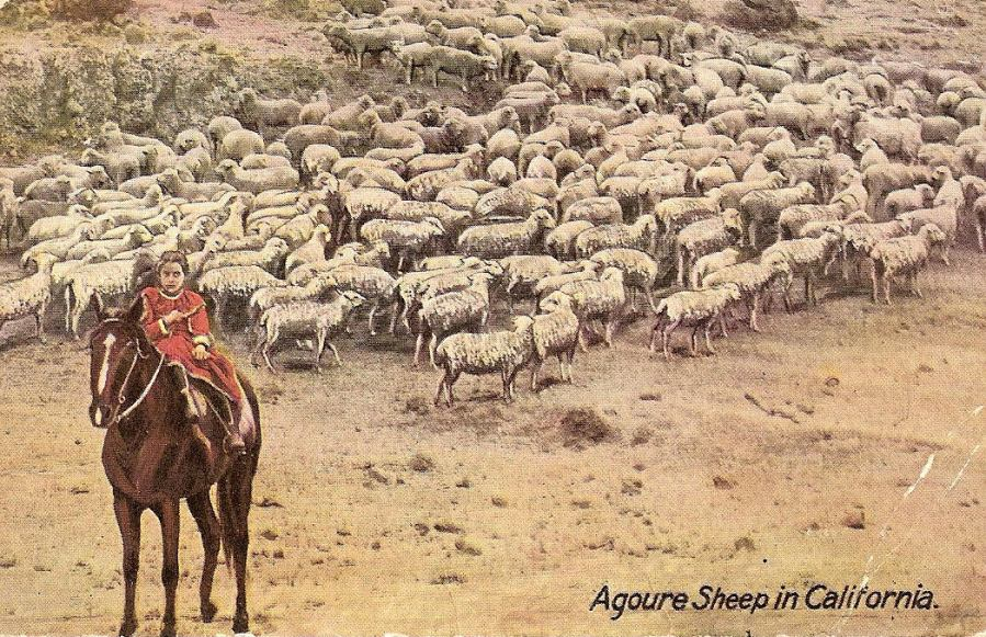 A girl rides a horse on the Agoure ranch in this illustration of the property. The sheep that surround the girl were a staple of the ranch, as Agoure came to prominence thanks to his sheep and cattle herding.