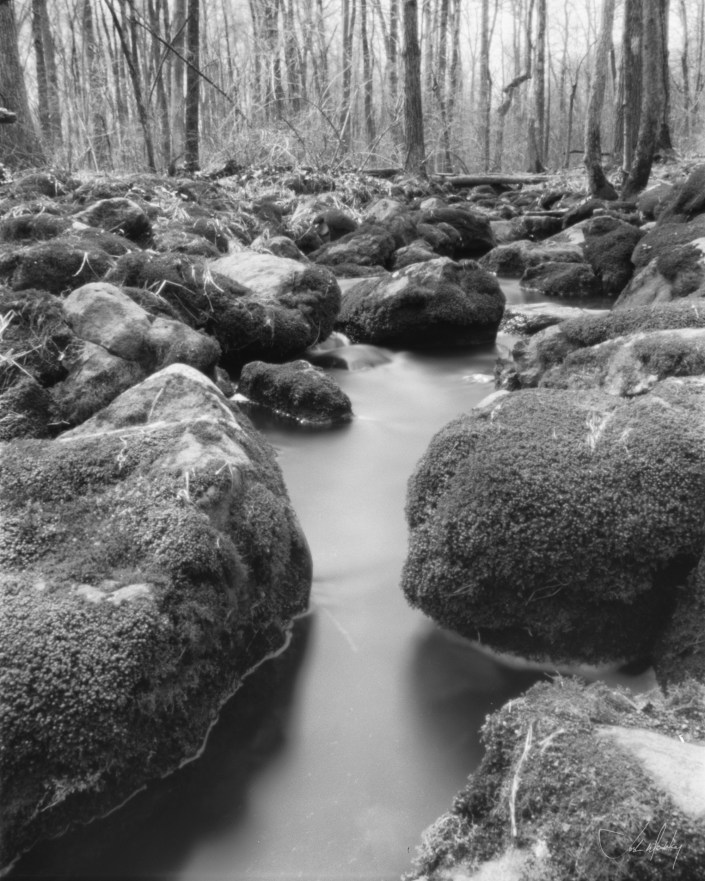4x5 Pinhole camera Stream