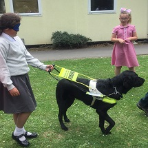 guide-dogs-visit-kingfishers-5