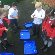 Science Waterproof Investigation 2