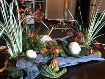 Driftwood With Pumpkins, Ornamental Peppers, Iris, Gourds