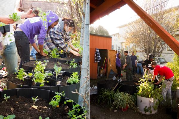 urban garden, oakland youth center garden