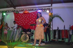 50_Baile do hawai_2013