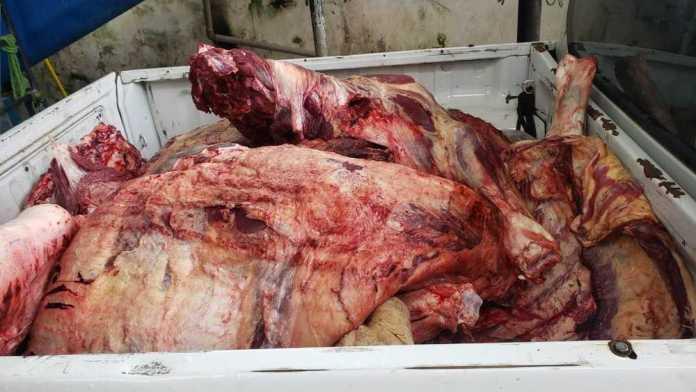 Polícia apreende carga com quase 500 quilos de carne bovina irregular na BR-364