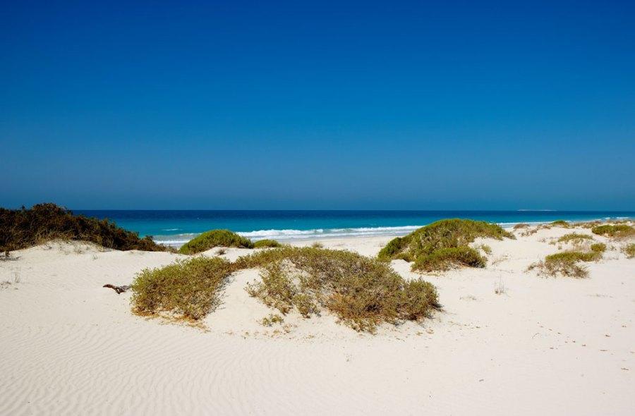 Saadiyat-Beach