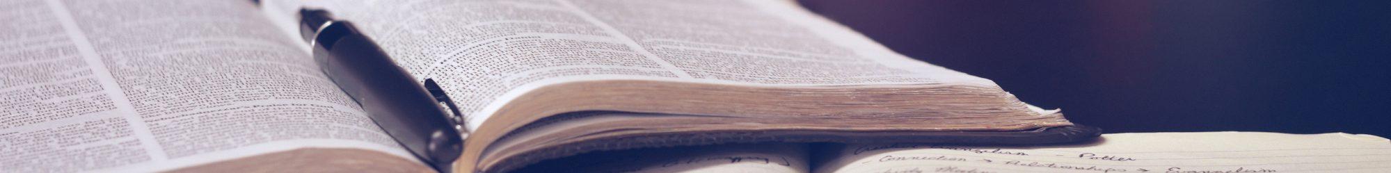 book thin image Oana Harrison marketing
